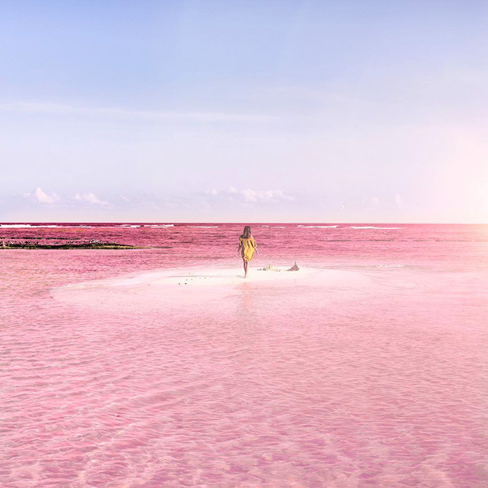 pink-lagoon-las-coloradas-mexico-15